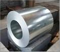 prepainted ga  anized steel coil 2