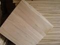 桐木拼板 1