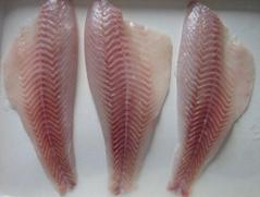frozen seabass fillet