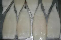 Frozen Squid tube