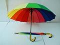 雨夫人彩虹傘 2