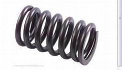 mold coil spring TF40x40