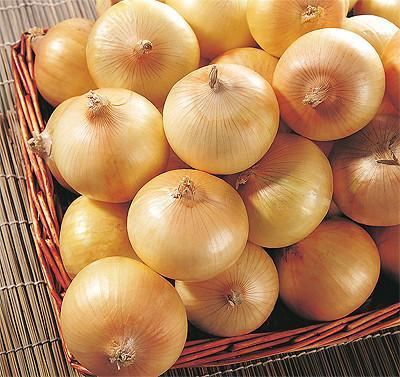yellow onion 1