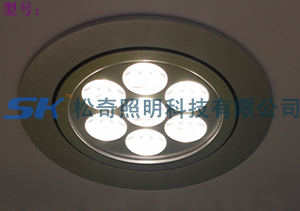 LED CEILLING down LIGHT 2