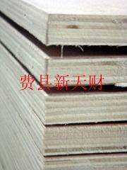 供應高檔環保CARB E0多層傢具板