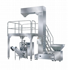 YTD-Z food packing packaging machine system