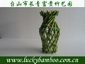 lucky bamboo---vase 1