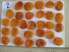sun dried Apricot