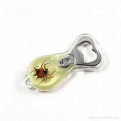 Horned Spider amber Bottle opener Real insect specimen Novelty item Promotional