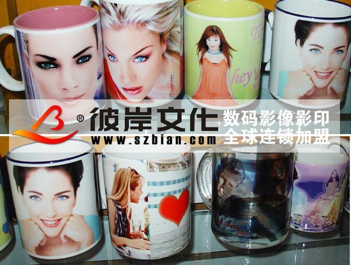 優質塗層影像杯 4