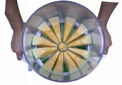 Multi-Function Fruit Slicer
