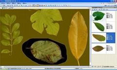 植物多用途叶面积仪