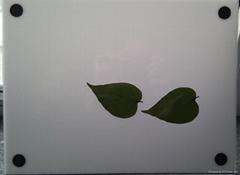 LA-S型植物叶面积仪系统