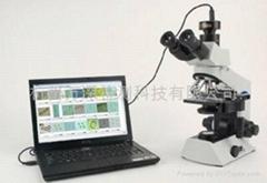 万深AlgaeC型藻类智能鉴定计数仪