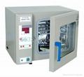 電熱恆溫培養箱,數顯普通型(H