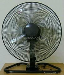 2 in 1 Fan