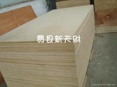 供應樺木貼面桉木芯CARB 膠合板