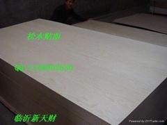 供應12釐CARB 松木貼面傢具板