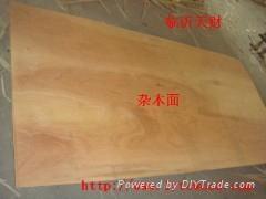 臨沂天財供應CARB P2全雜木面膠合板
