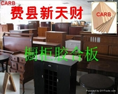 供应CARB P2花纹杨木胶合板