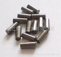 carbide tyre nail