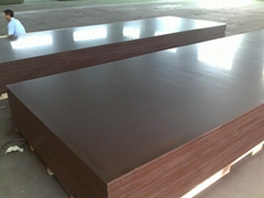 2*6M FILM FACED PLYWOOD
