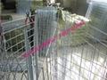 公园双圈护栏网