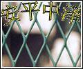 喷塑钢板网 浸塑钢板网 金属拉