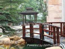 嘉桥古船木小桥 2