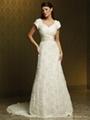 Short Sleeve A-line Lace Wedding Dress
