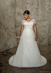 Gorgeous Appliqued Short Sleeve A-line Wedding Dress