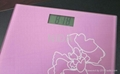 electronic body  scale 2