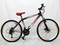 Rui high-carbon steel disc mountain bike