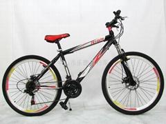瑞冠高碳鋼碟剎山地自行車