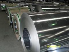 GI-GALVANIZED STEEL COIL