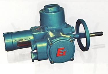 防爆型閥門電動裝置 1