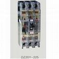 DZ20Y-225/3300塑