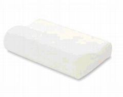 Healthman Memory Foam Health Pillow