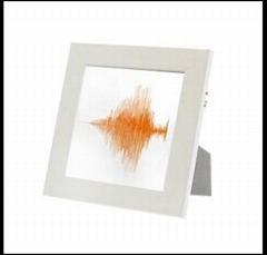 PPP的产品——音乐声纹图案相架