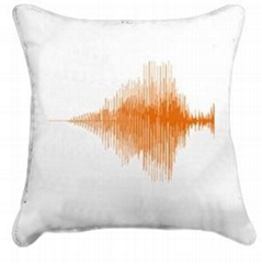 PPP的产品——音乐声纹图案抱枕