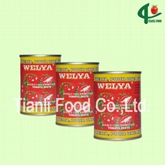 140g canned tomato paste 28-30