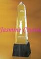 水晶奖牌 1