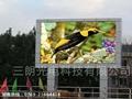 陽江LED廣告顯示屏 2
