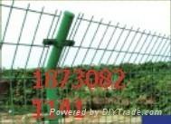 双边丝护栏网现货