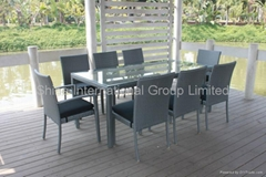 C490 Dining chairs and table