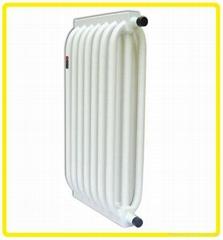 保定德恩普环保科技有限公司供应钢管复合散热器