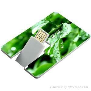 Hot sell credit card pen drive 2