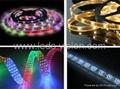 RGB LED strip,LED rope light,LED rigid strip,alluminum strip with led driver