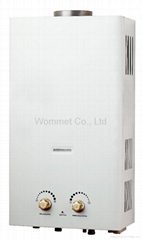 8L-12L Flue type gas water heater