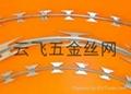 刀片刺网 5